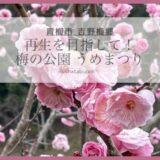 梅の里の再生を目指して!東京都青梅市の「梅まつり」