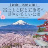 富士山と桜と五重塔が1度で写真に撮れる「新倉山浅間公園」の桜まつり