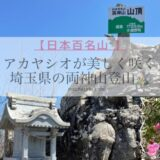 【日本百名山】アカヤシオが美しく咲く埼玉県の両神山登山・白井差新道