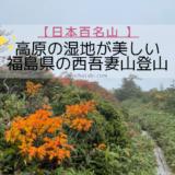 紅葉が美しい福島県の西吾妻山・湿地にかかる木の道を歩く【日本百名山】