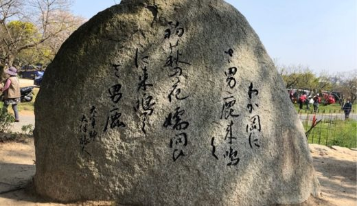 【福岡県太宰府】浪漫あふれる万葉集・9つの万葉歌碑を巡る旅