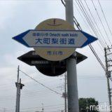 千葉県 大町梨街道の1袋500円「訳あり梨」の食べ比べ!ごんしろう園・大百園の梨
